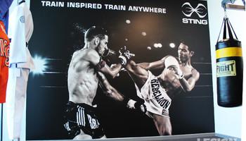 Sting Sports Wall Image