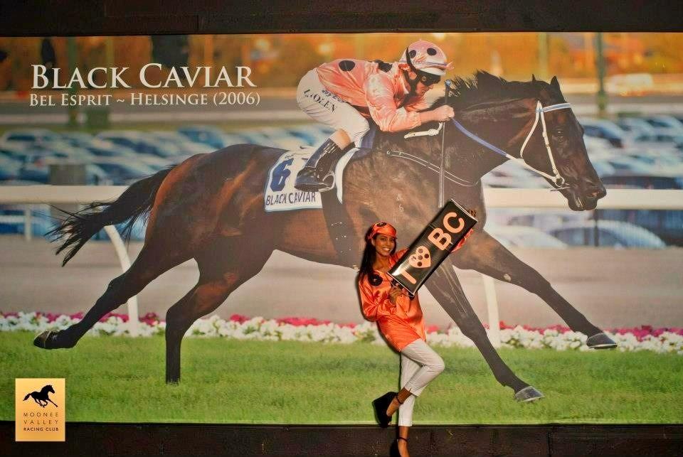 LF Sign Group print & install huge Black Caviar banner!!